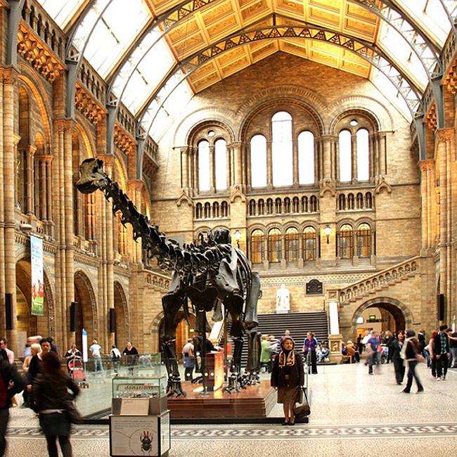 Fantastic Beasts @ Natural History Museum