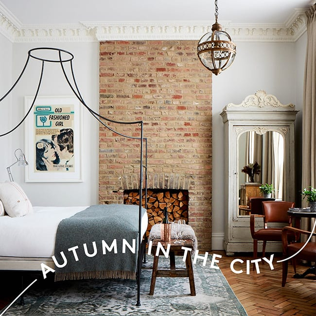 25% off Autumn